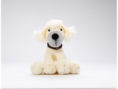 poppy the poodle